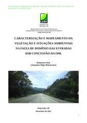 Relatório Final (Regis Bittencourt)_bel.doc