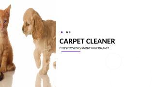 Carpet Cleaner.ppt