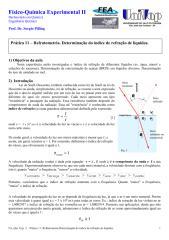 2016 BRIX FQE2_EXP11_Refratometria.pdf